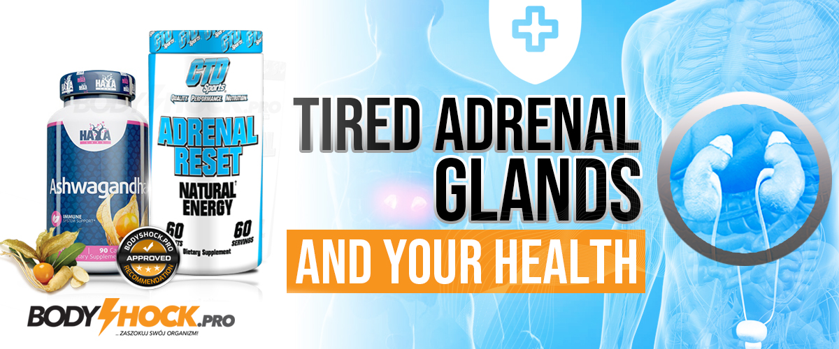 Adrenal fatigue and your health