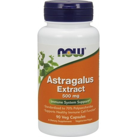 Astragalus Extract 500mg 90 caps